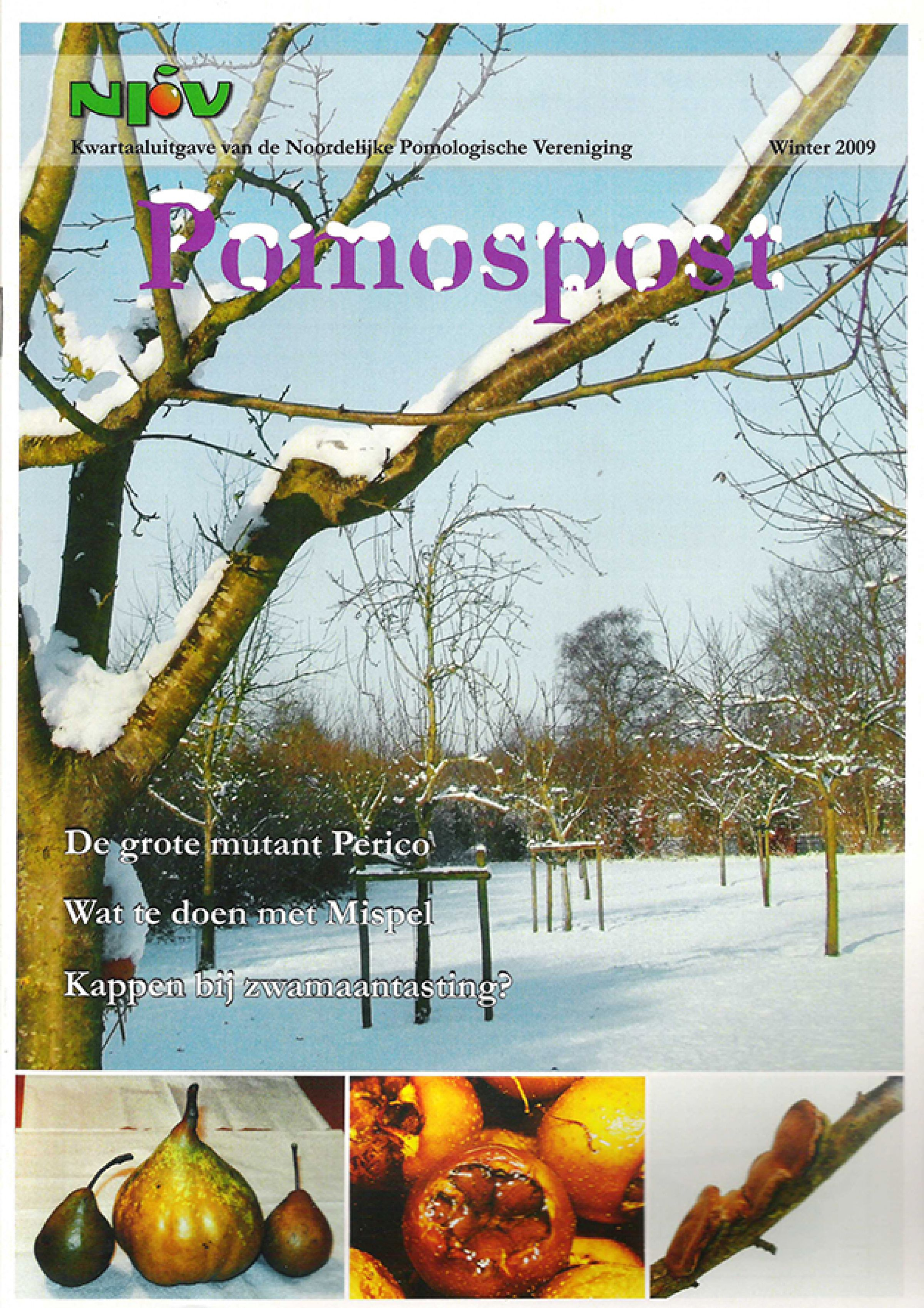 Pomospost 2009 winter 900